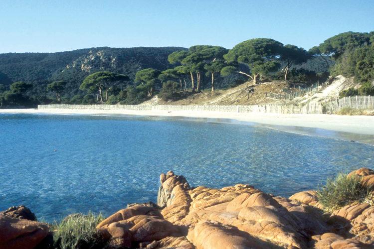 Porto-Vecchio, plages, balade, sudcorse, Bonifacio, Corse.jpg