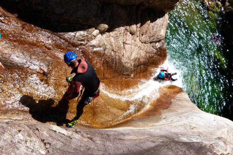 Corsica-forest-activités-Corse.jpg