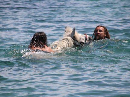 Ranch-sandiego-equestre-mer-Bonifacio-Corse.jpg