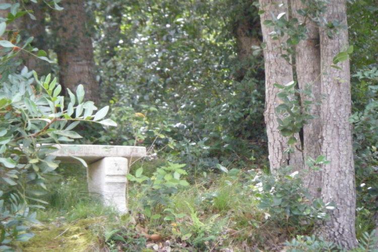 Location-Acellu-Bonifacio-bienêtre-nature