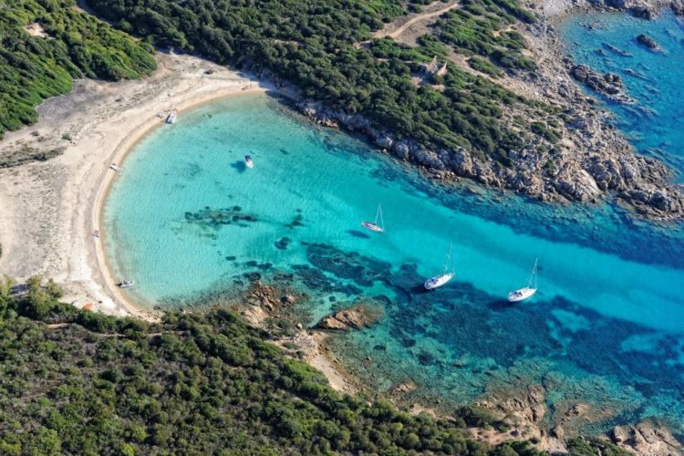 Oleadey-agence-receptive-Bonifacio-destination-Corsica.jpg