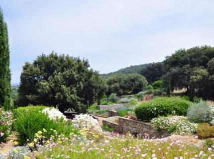 Parc-de-Saleccia-jardins-corsica.jpg