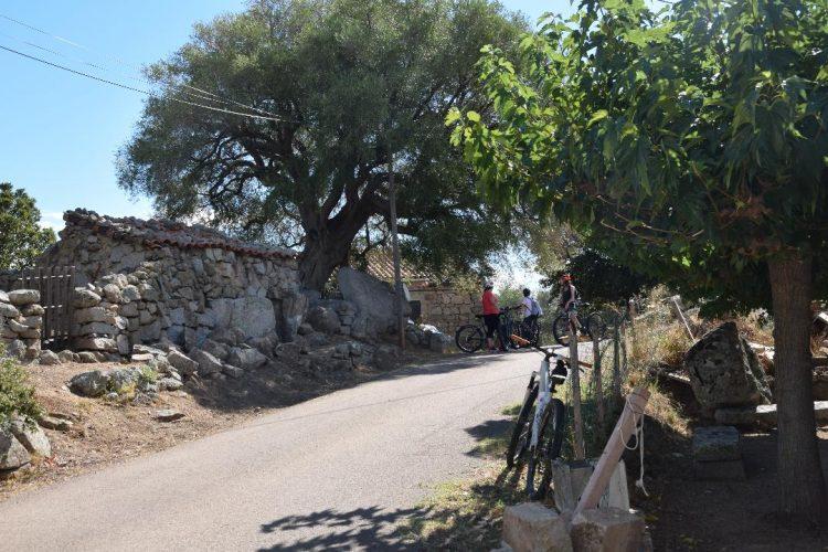 E-Sperienza-paysage-Corse-village-activité.jpg