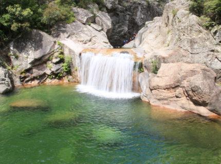 Corsica-forest-activités-balade-mutagna-Corse.jpg