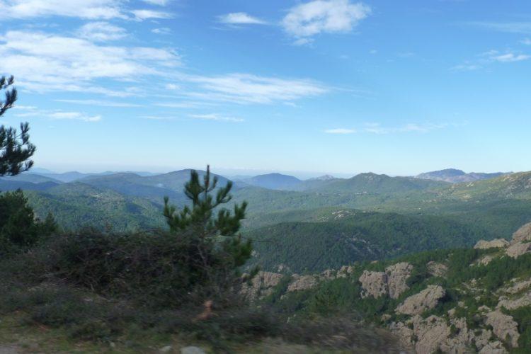 Natura-Corsa-sauvage-forêt-paysage.jpg