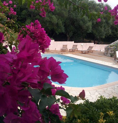Locationmeublés-catoirdaniel-piscine-bonifacio-corse.jpg