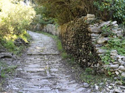 Expérience fazzio, sentier, Bonifacio, Corse.jpg