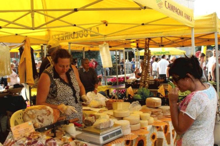 marché-santa-teresa-bonifacio-corse.jpg