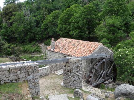 Sentier-Serra-balade-Bonifacio-Corse.jpg