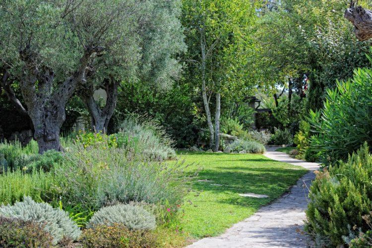 Jardin-ambiance-parck.jpg