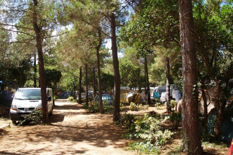 Camping-campdiliccia-voyage-bonifacio-corse.jpg