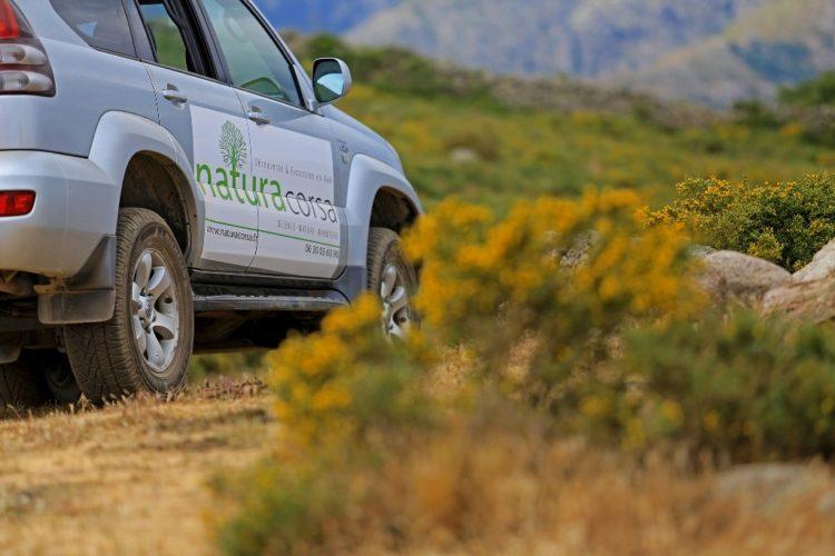 Natura-Corsa-sauvage-maquis-paysage.jpg