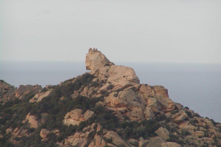 lion-de-roccapina-Bonifacio-paysage-corsedusud.jpg