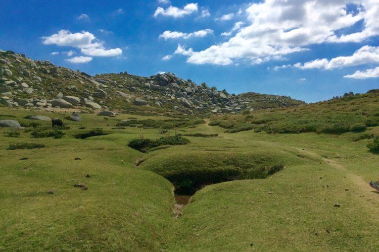 Top25-cuscionu-plateau-Corsica-montagne