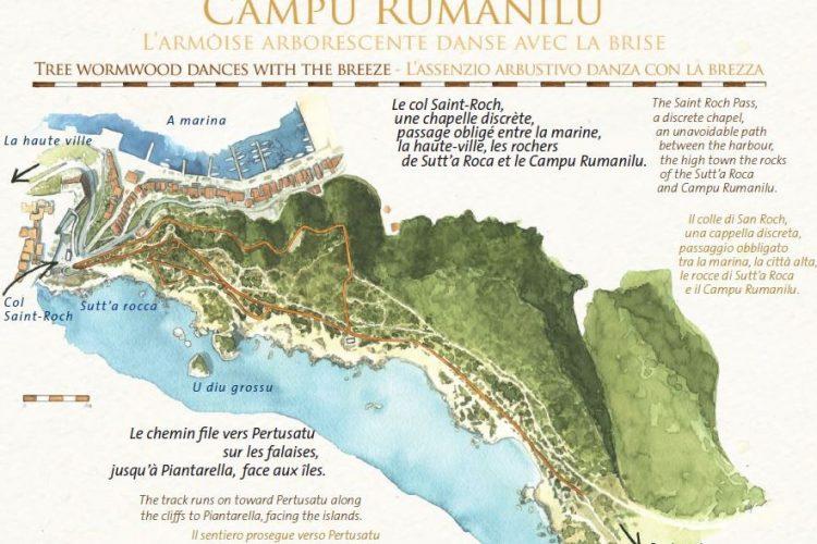 Campu Rumanilu sentier Bunifaziu