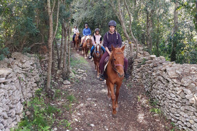 Balade chevaux enfants